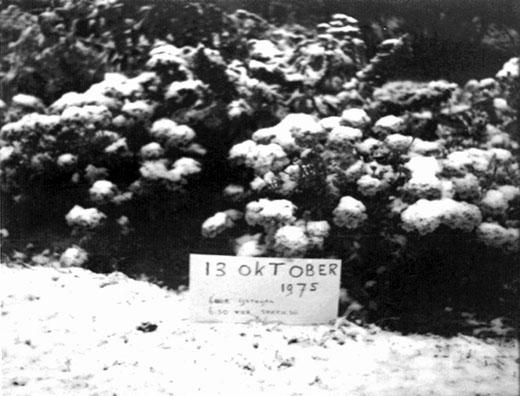 Het bewijs: een witte laag op 13 oktober 1975.