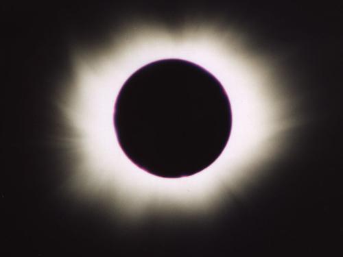 Bij een totale zonsverduistering zijn de effecten op de natuur het grootst (bron Stichting De Koepel)
